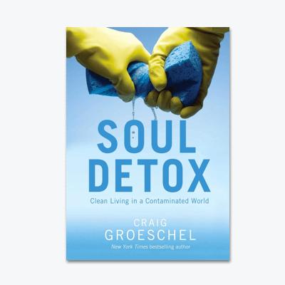 best-christian-books-Soul-Detox-Clean-Living-in-a-Contaminated-World-Craig-Groeschel